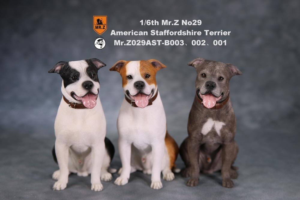 mrZ-dog29-01