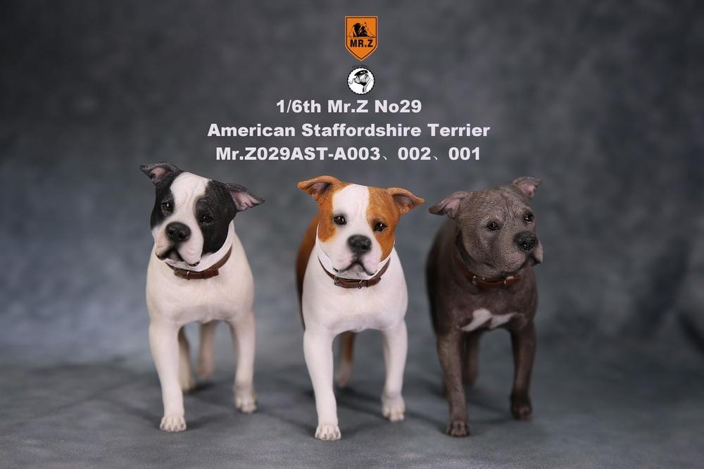 mrZ-dog29-02