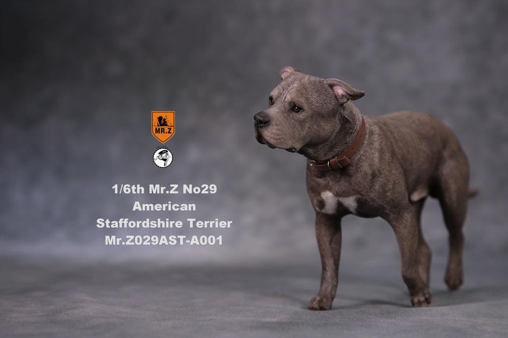 mrZ-dog29-03