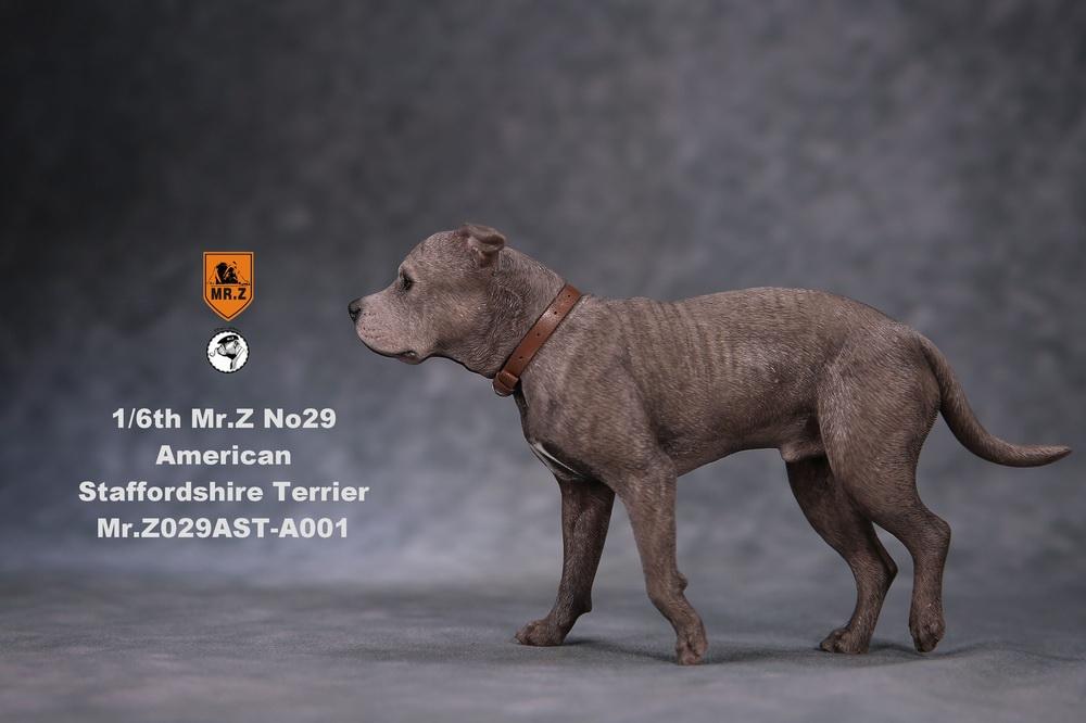 mrZ-dog29-04