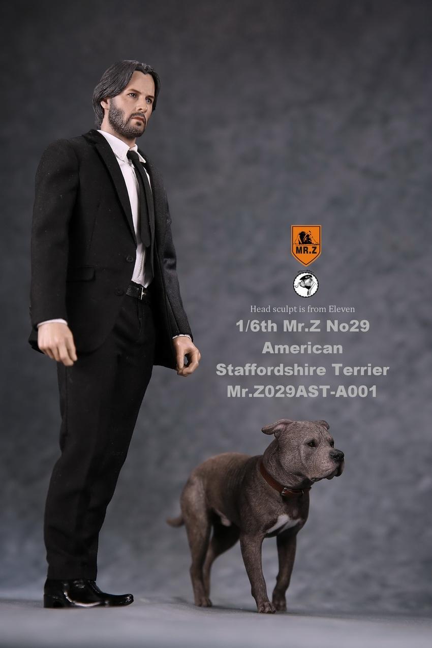 mrZ-dog29-05