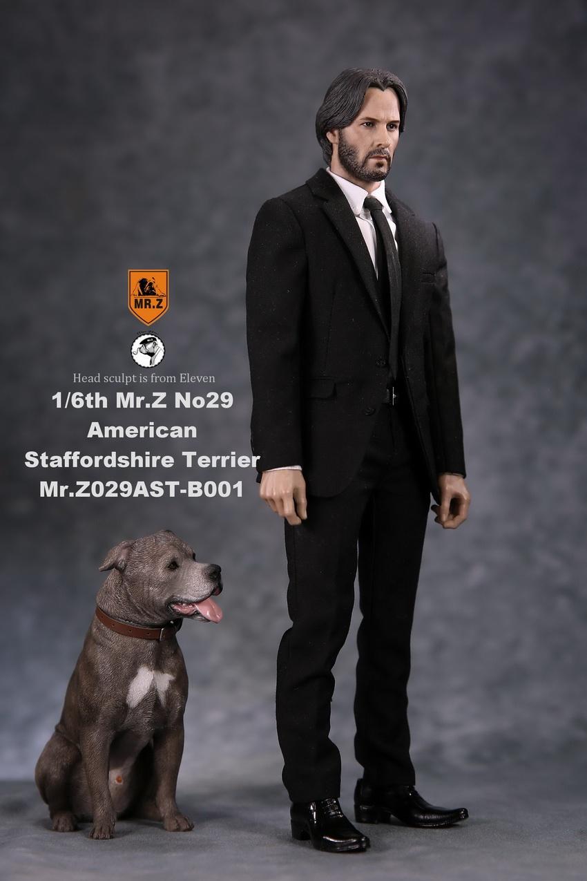 mrZ-dog29-06