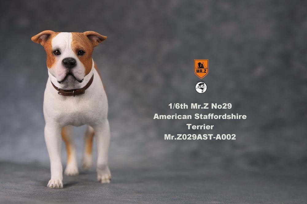 mrZ-dog29-08