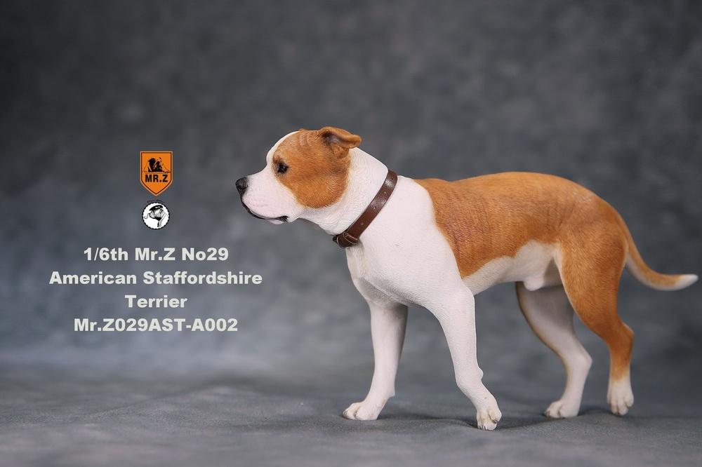 mrZ-dog29-09