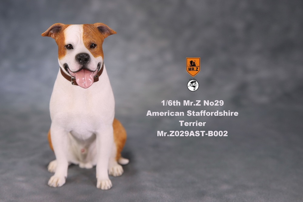 mrZ-dog29-10