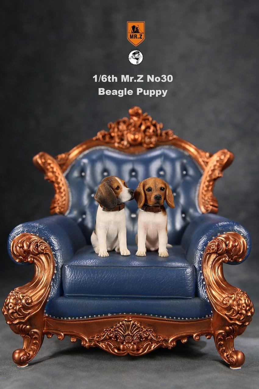 mrZ-dog30-06
