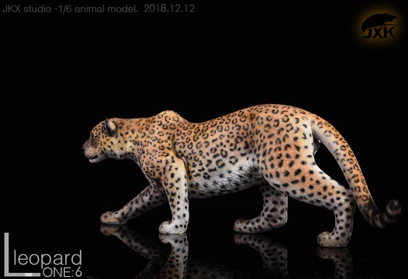 jxk-leopard01