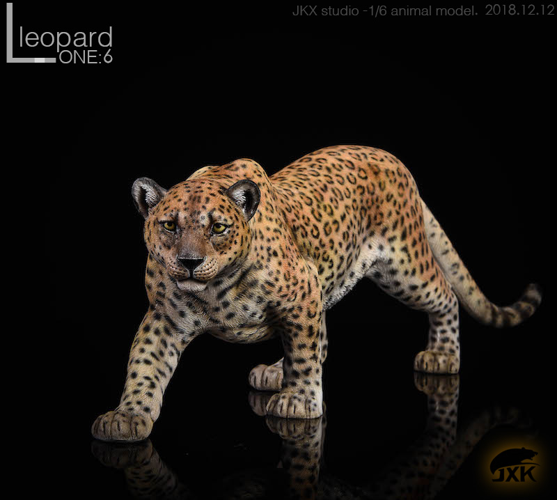 jxk-leopard02