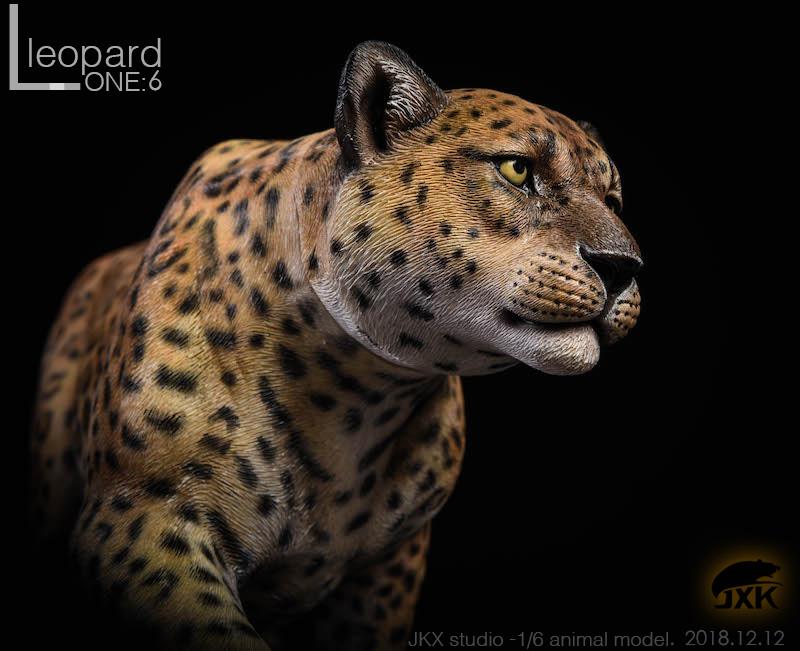 jxk-leopard03