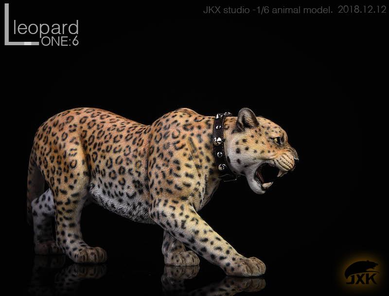 jxk-leopard04