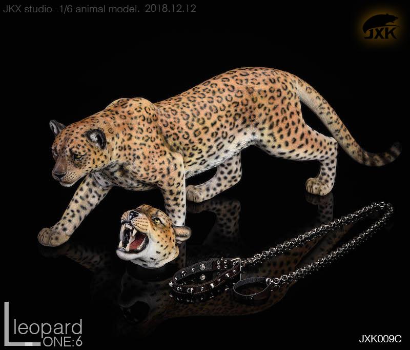 jxk-leopard05
