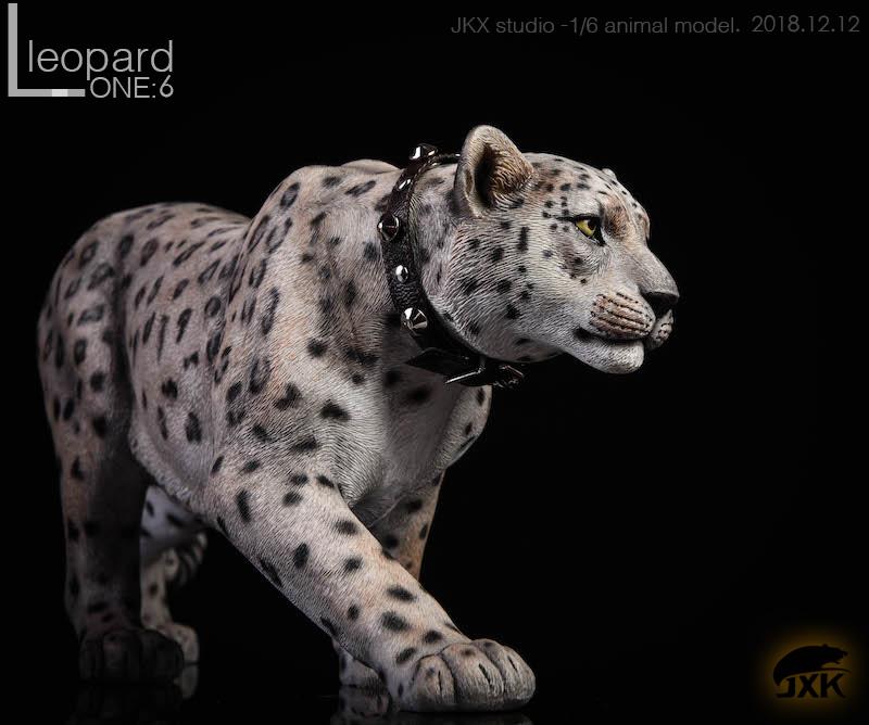 jxk-leopard06