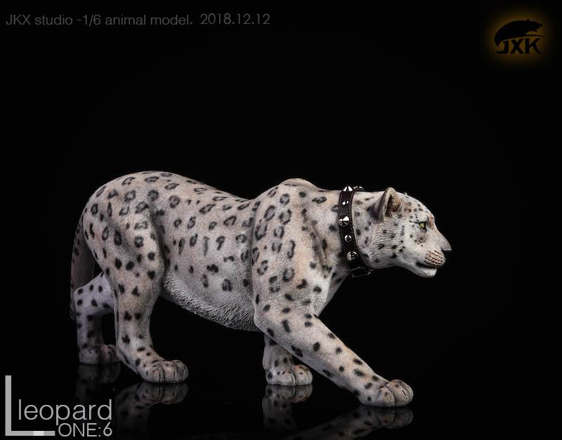 jxk-leopard07