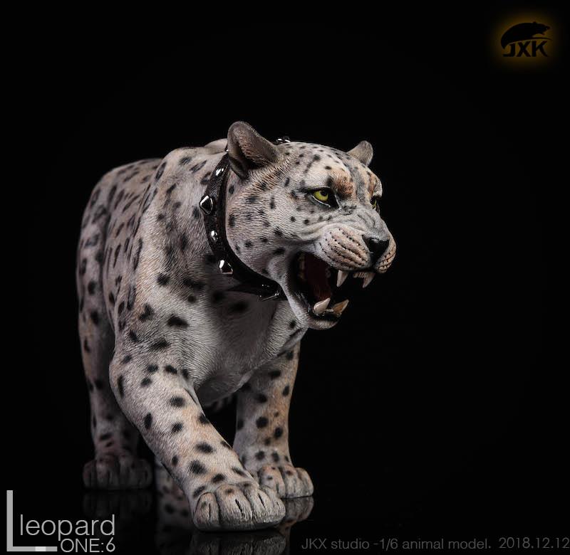 jxk-leopard08