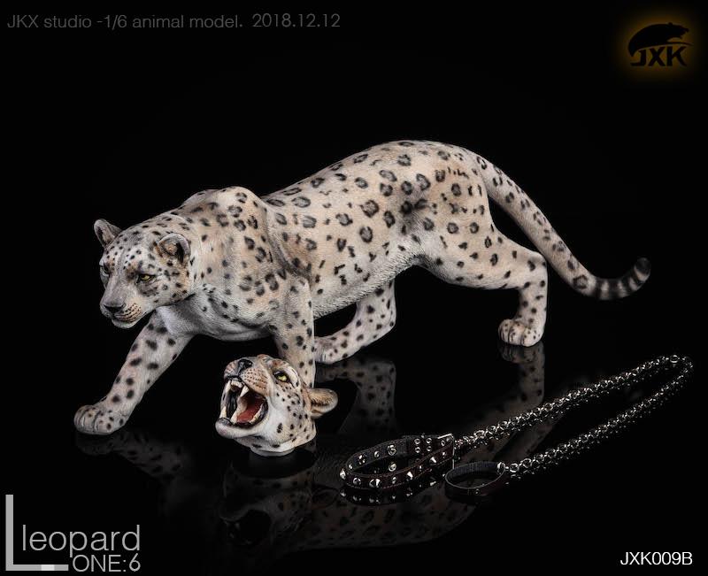 jxk-leopard09
