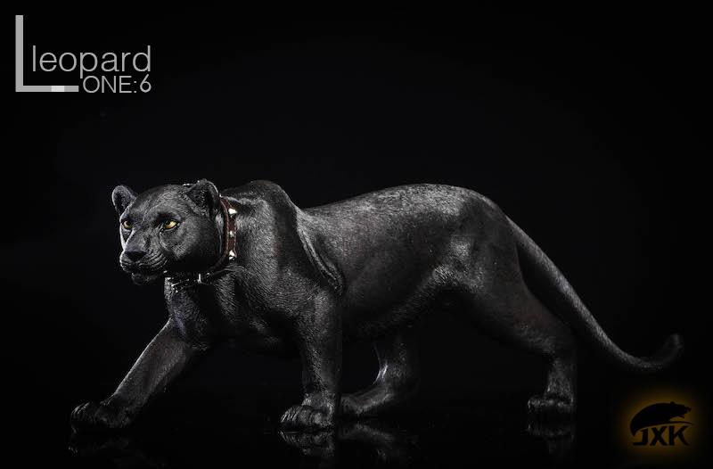 jxk-leopard10