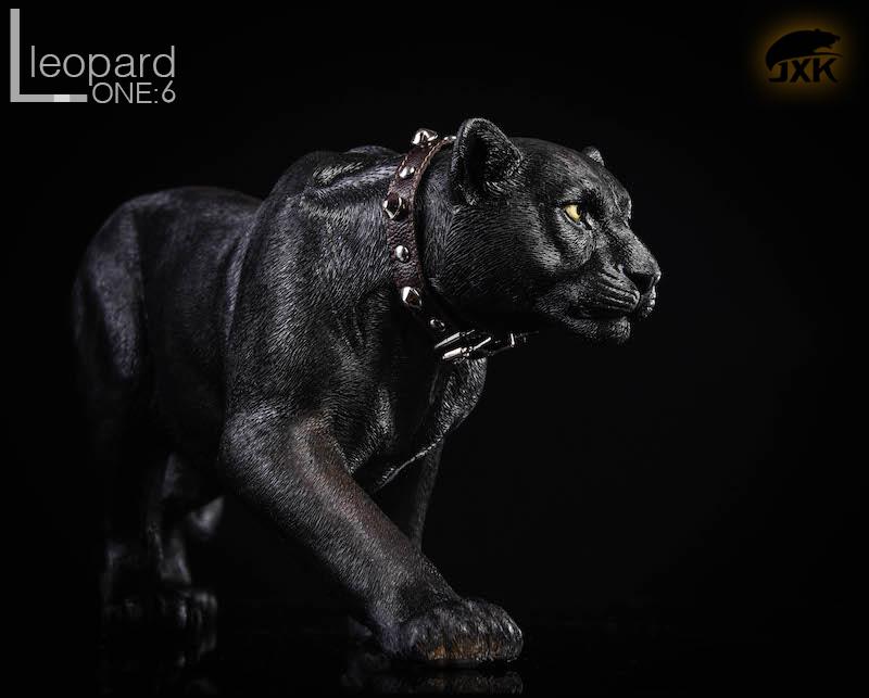 jxk-leopard11