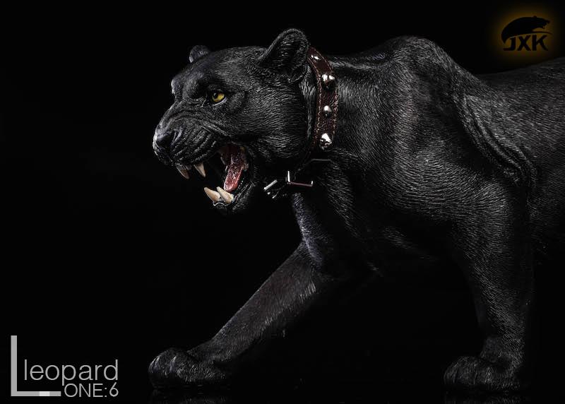 jxk-leopard12