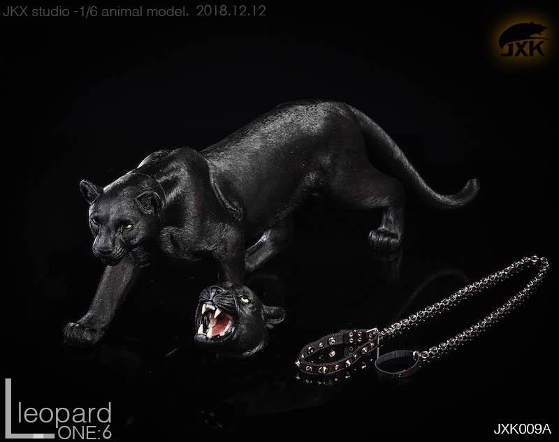 jxk-leopard13