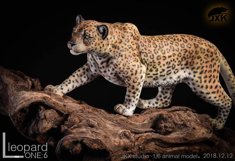jxk-leopard4a