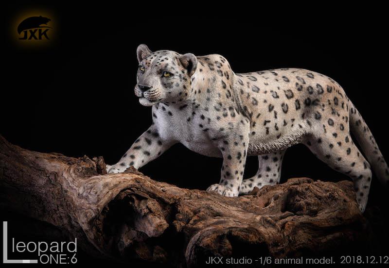 jxk-leopard8a