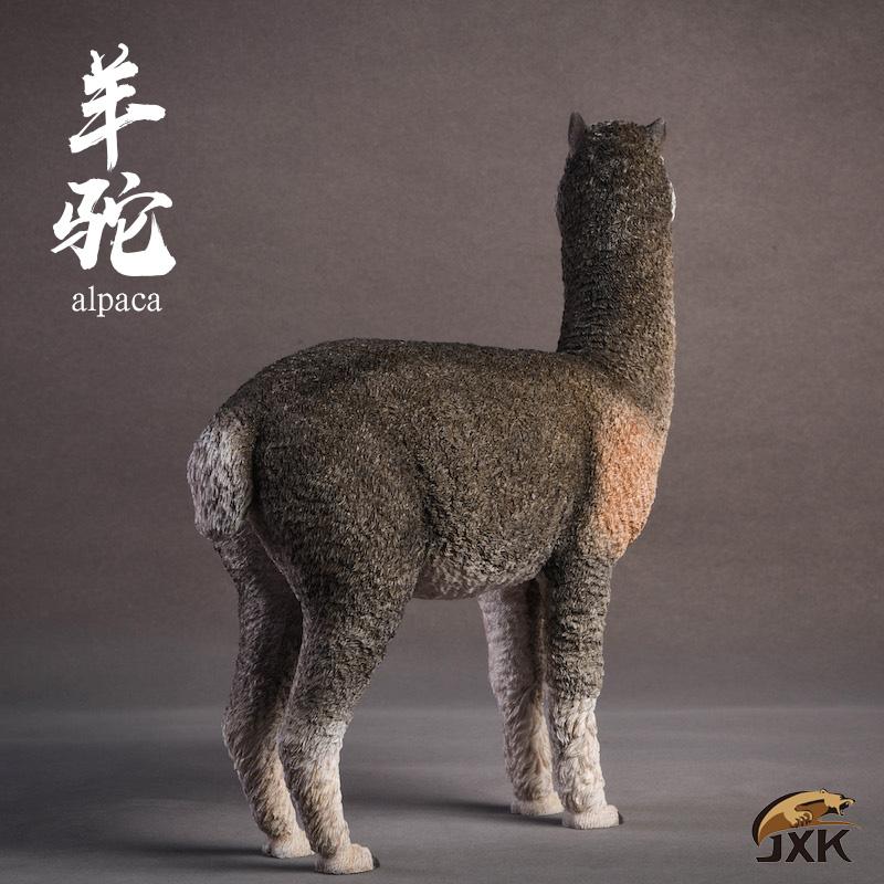 jxk-alpaca03