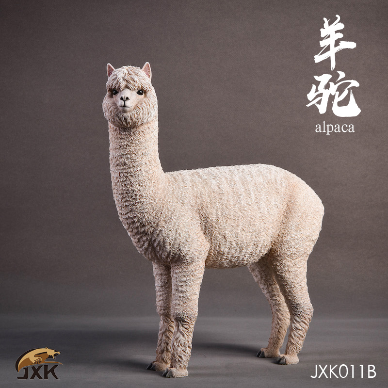jxk-alpaca04