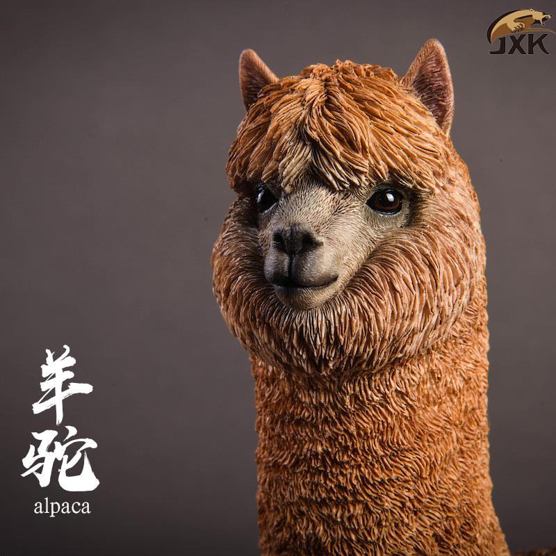 jxk-alpaca06