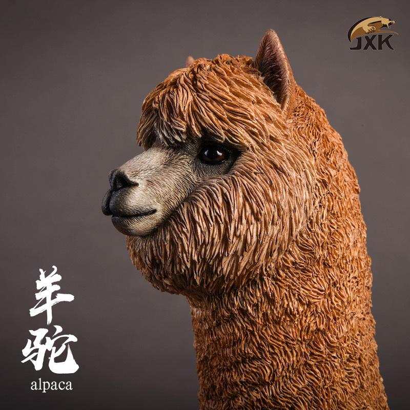 jxk-alpaca07