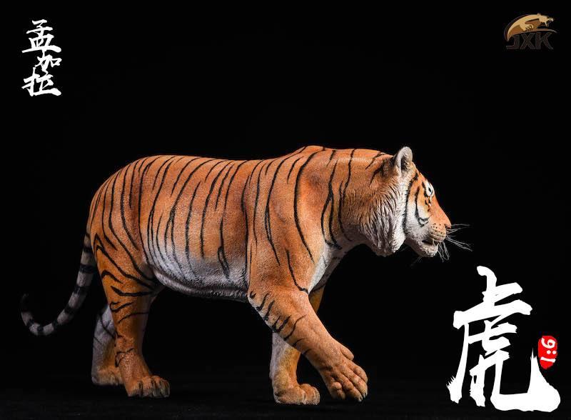 jxk-tiger01