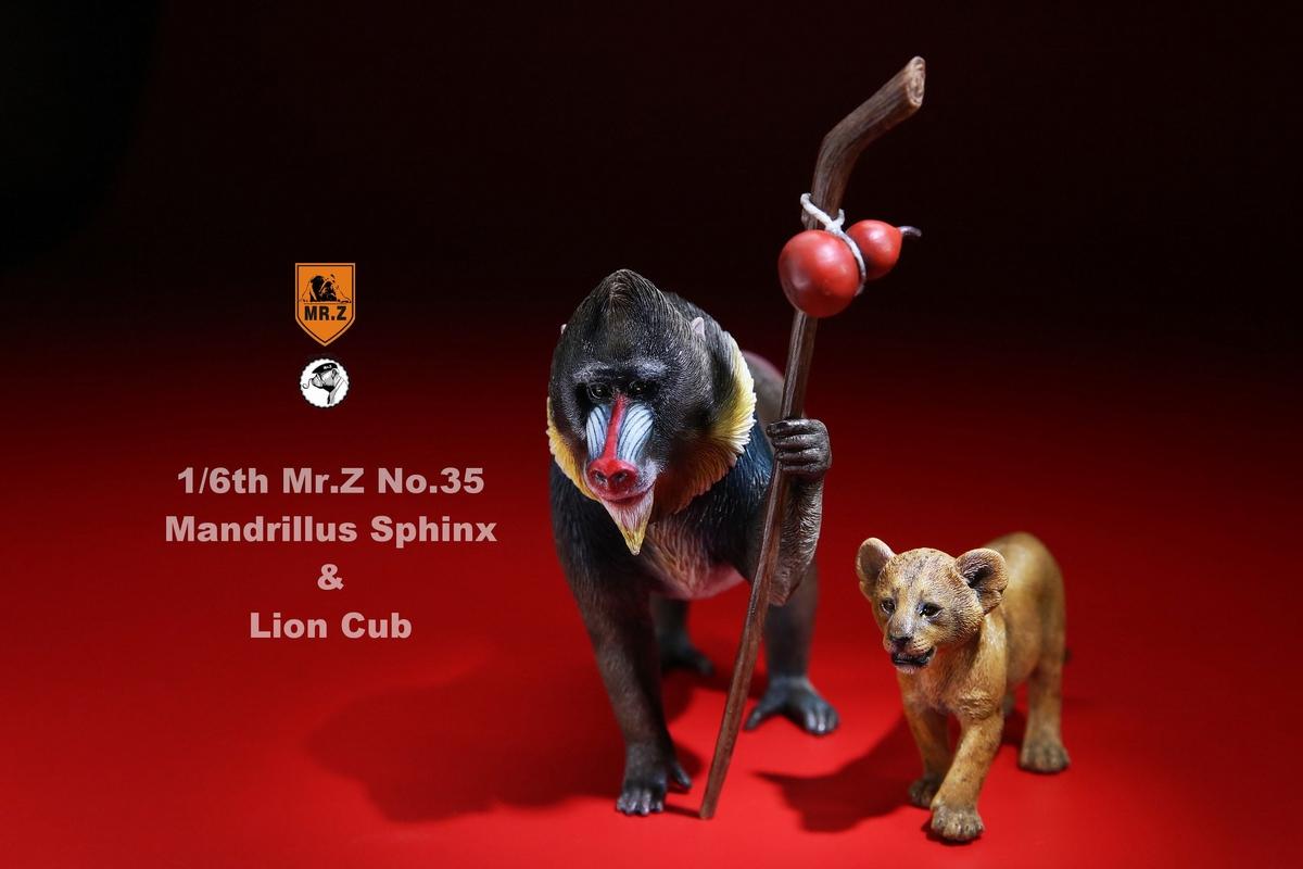 mrZ-mandrill-lion01