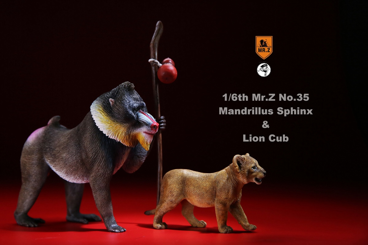 mrZ-mandrill-lion02