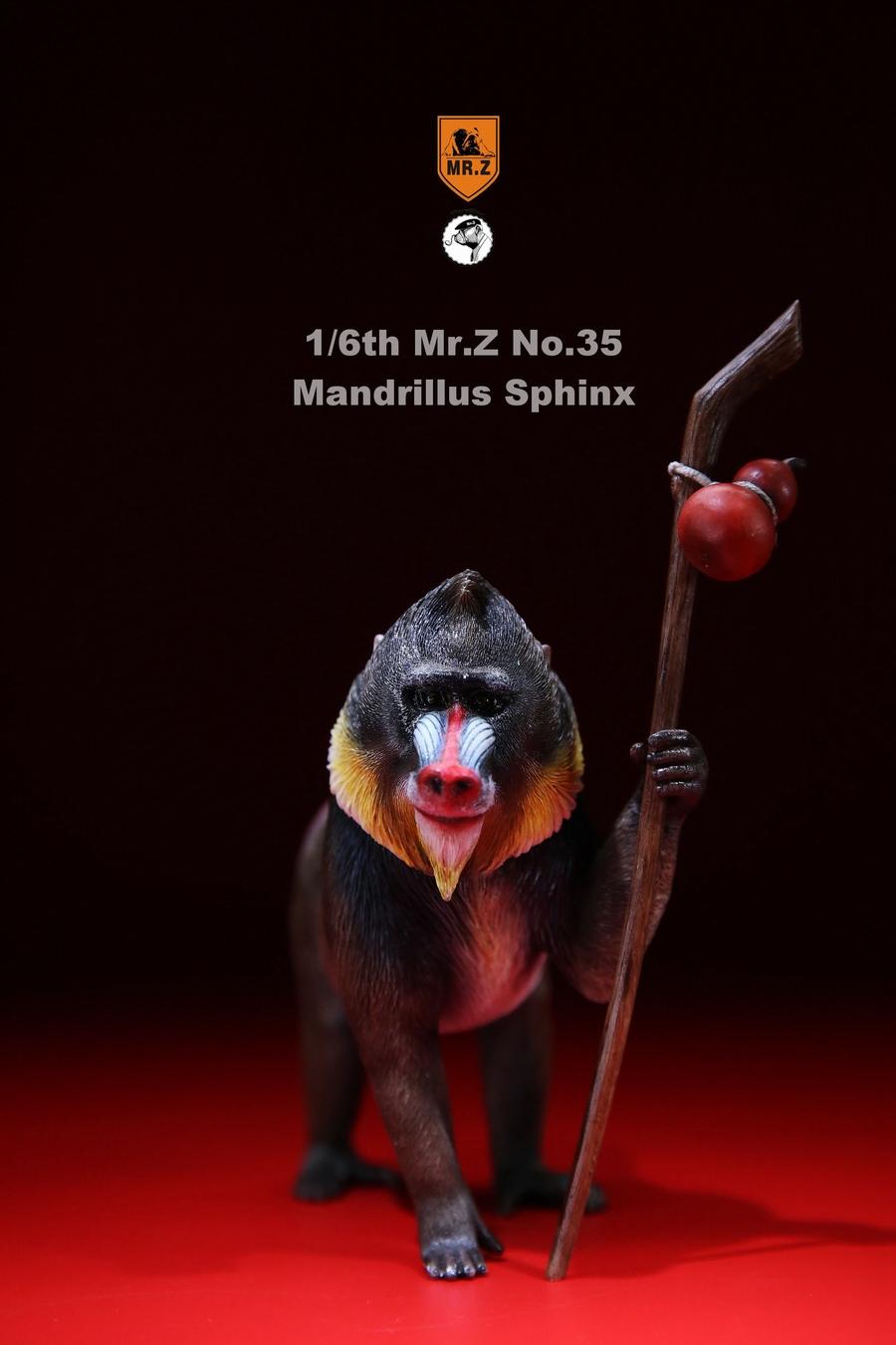 mrZ-mandrill-lion03
