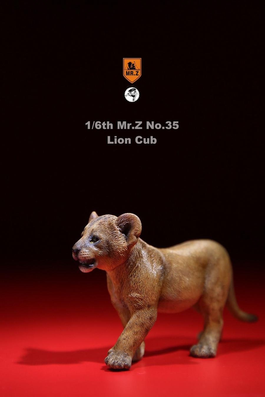 mrZ-mandrill-lion05