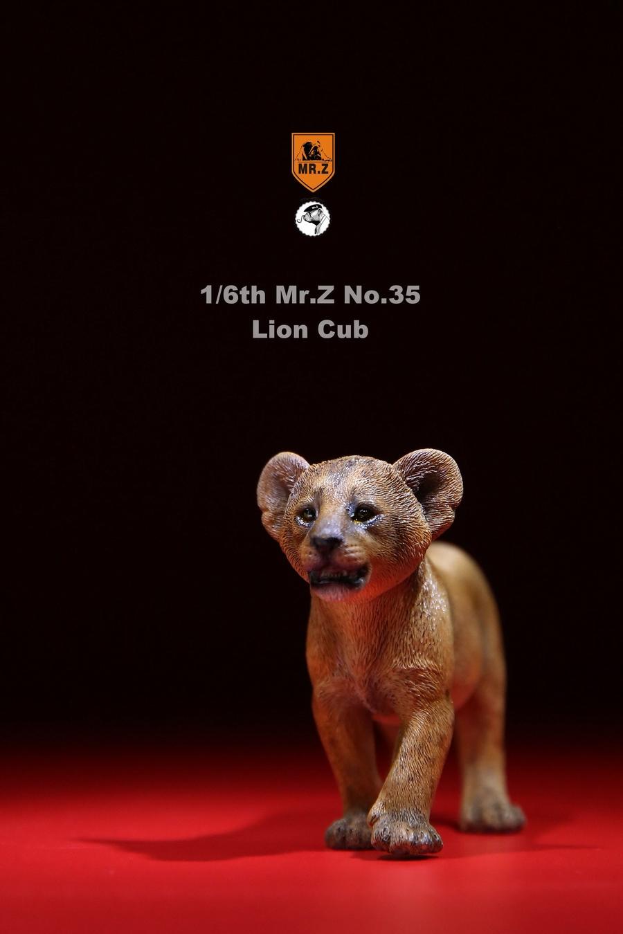 mrZ-mandrill-lion06