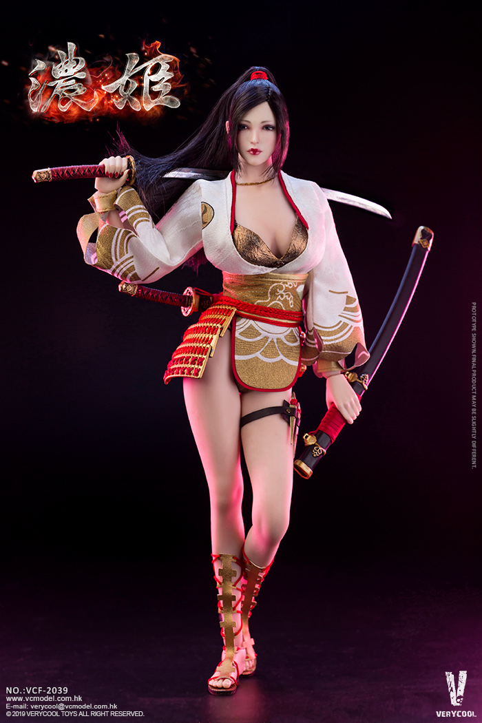 Very Cool Ancient Japanese Heroine Series Nōhime