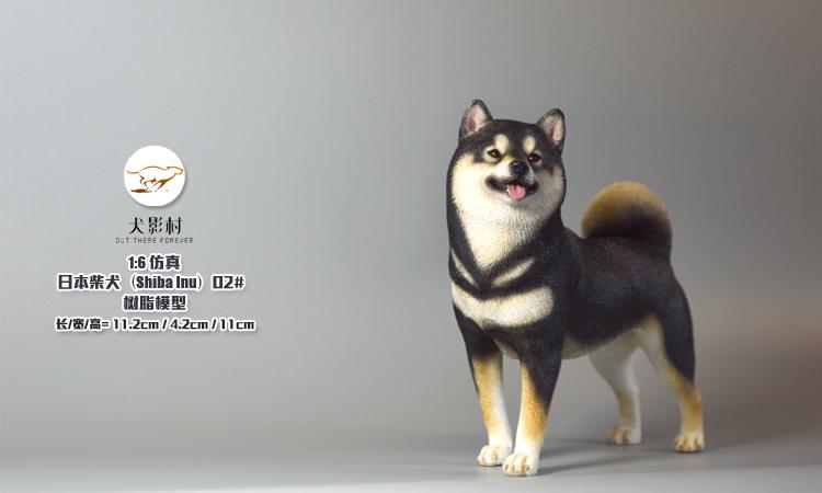 Canine-Shadow-Village-Shiba-Inu04