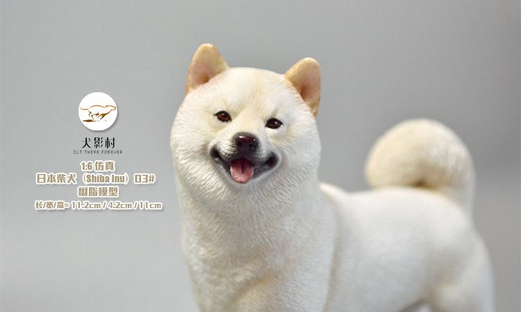 Canine-Shadow-Village-Shiba-Inu07