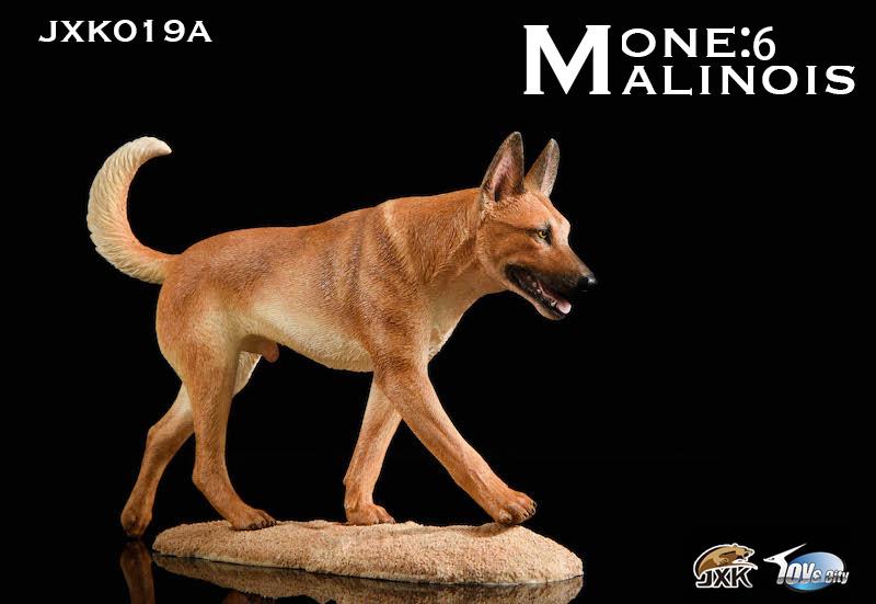 jxk-malinouis01