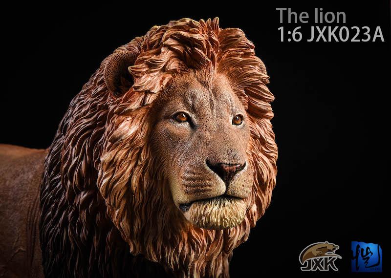 jxk-lion04