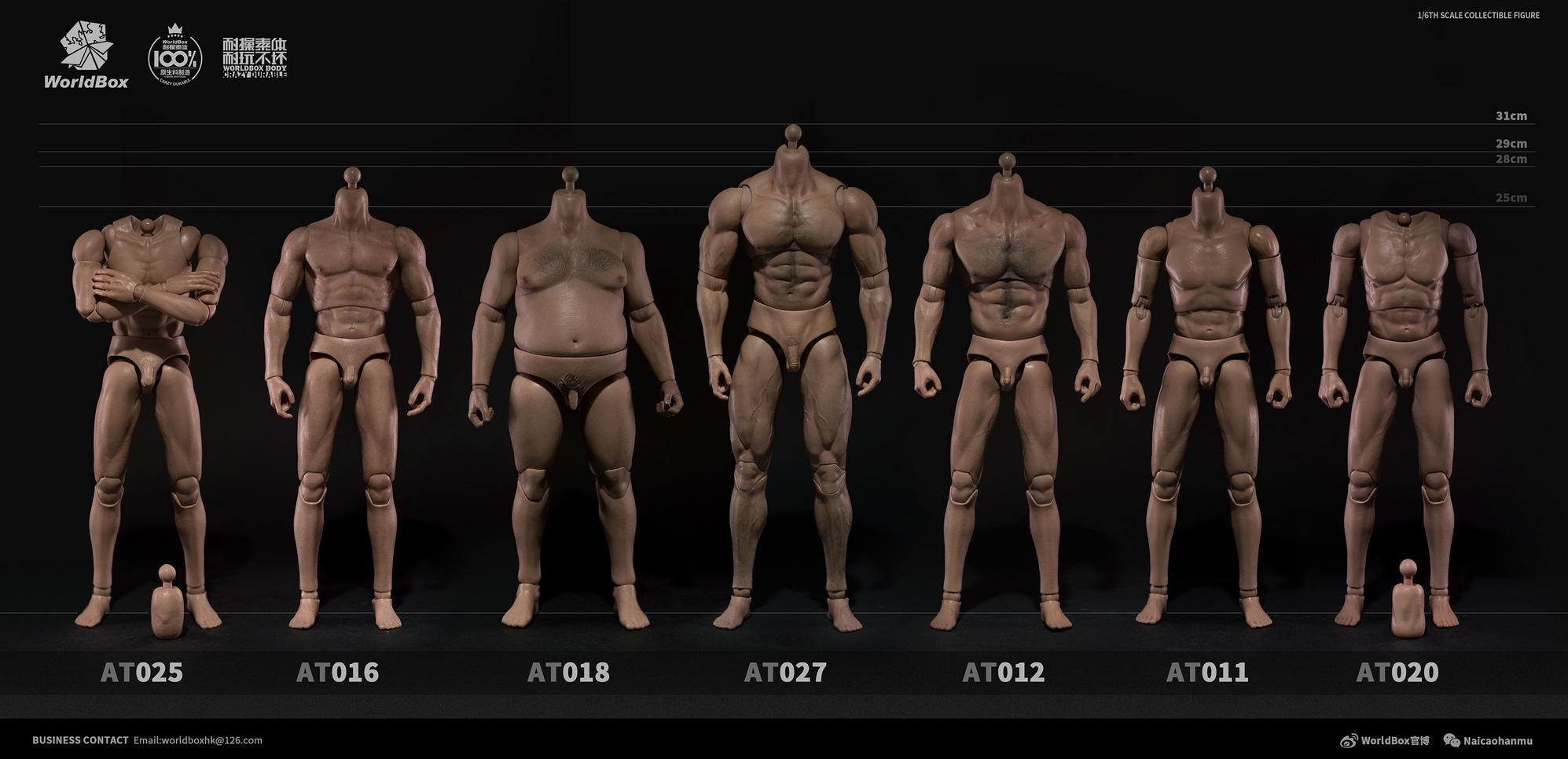 wb-bodyAT020-07
