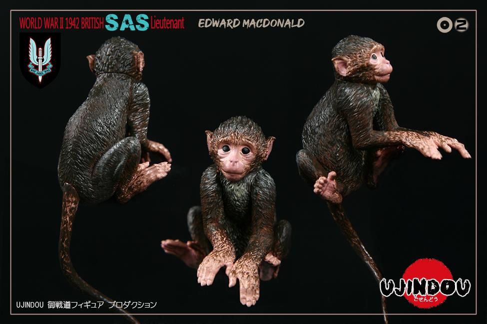ud-macdonaldSAS009