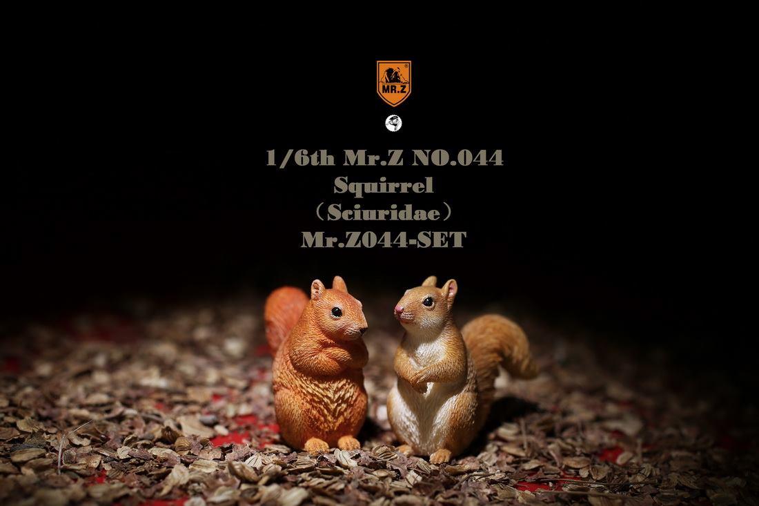 mrz-eichhoernchen010