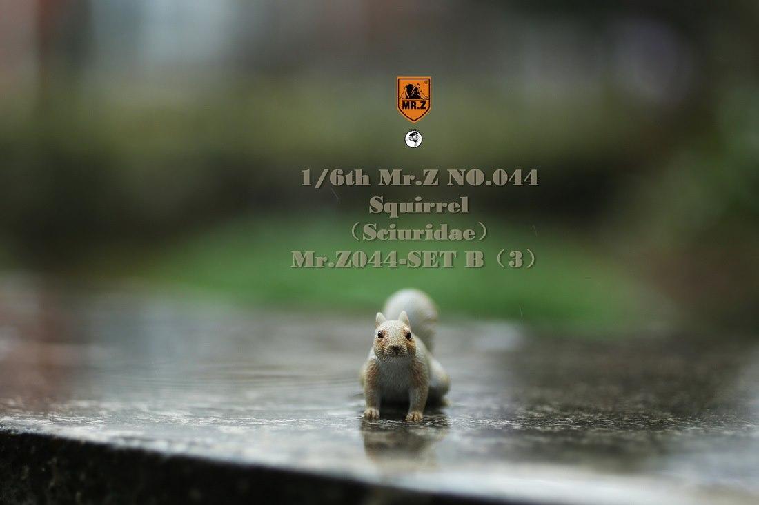 mrz-eichhoernchen014