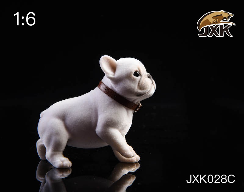 jxk-puppy04