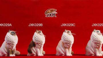 jxk29cat00