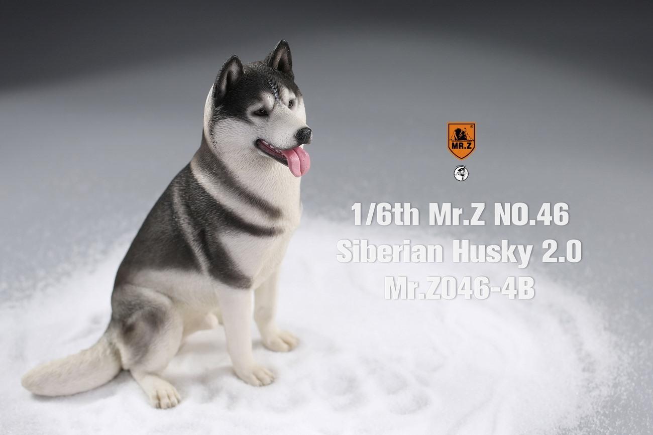 mrz-husky08
