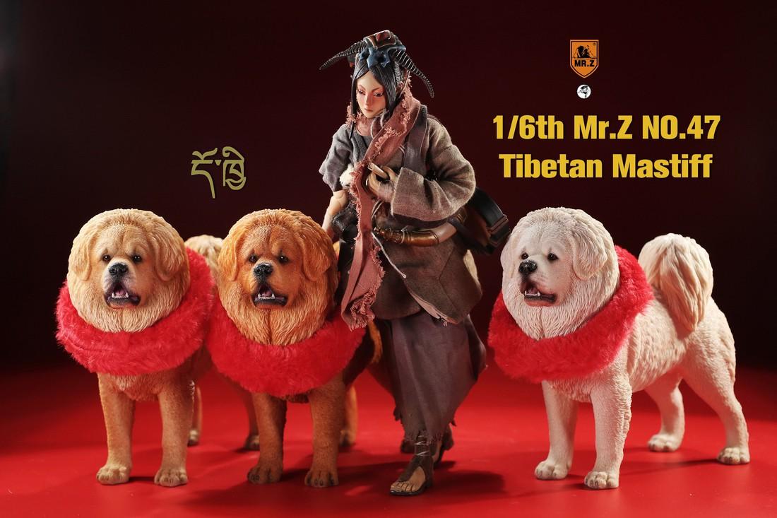 mrZ-tibetan.mastiff01