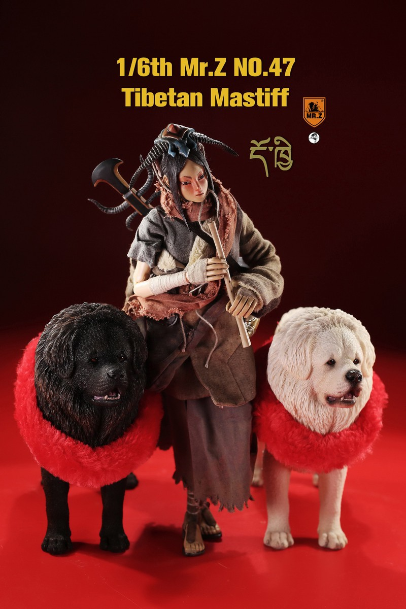mrZ-tibetan.mastiff04