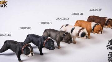 jxk-dog34-00